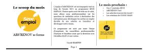 Newsletter Pôle insertion avril 2021 3